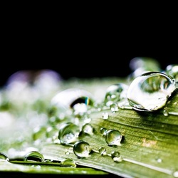 Raindrop diamonds
