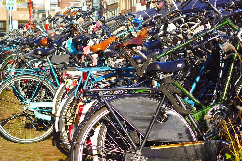 De fiets -