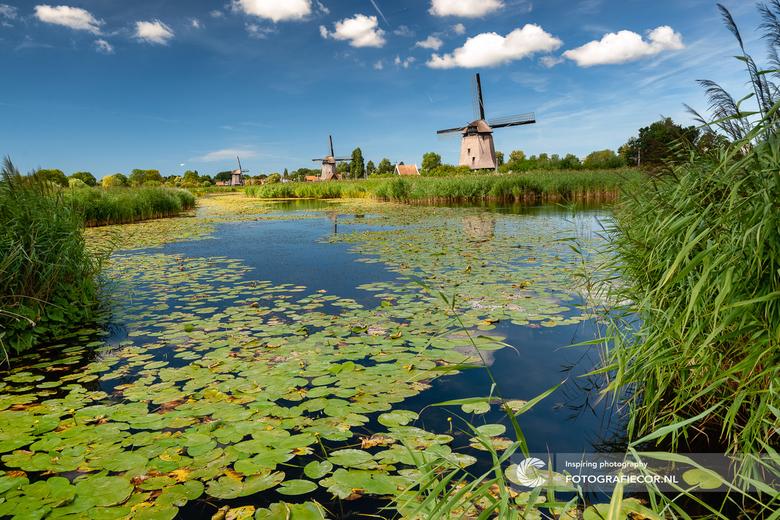 Struinen door de Hollandse polder