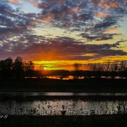 Obbicht 6nov17  blik over de Maas