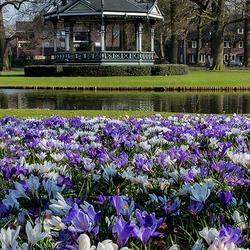 Lente in Oranjepark