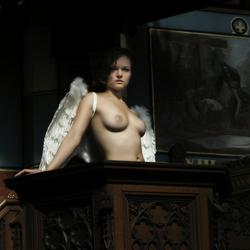 angel 488