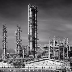Industriële jungle