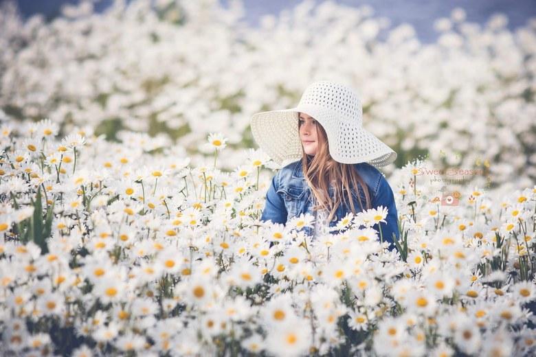 Wit veld  -
