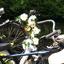 gezellige fiets