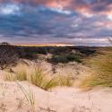 Zuid-Hollandse landschappen