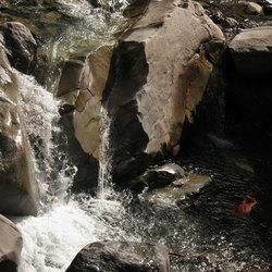 daar bij de waterval