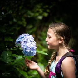 De Schoonheid van de Natuur
