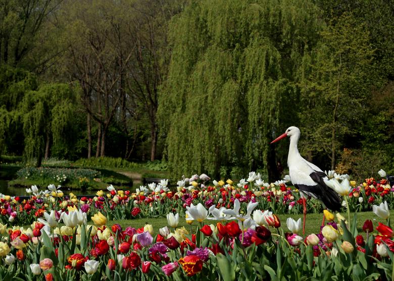 Onze natuur, zo mooi .......