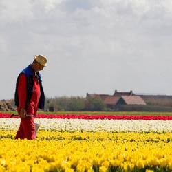boer tussen de bloemen