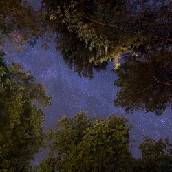 Beautifull Nightsky