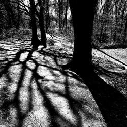 Spooky shades 02
