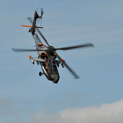 Nederlandse Apache