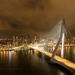 Rotterdam / Erasmusbrug