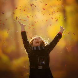 The magic of fall