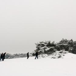 Wekeromse Zand met sneeuw 3