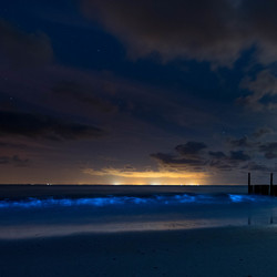Glow in the dark zee