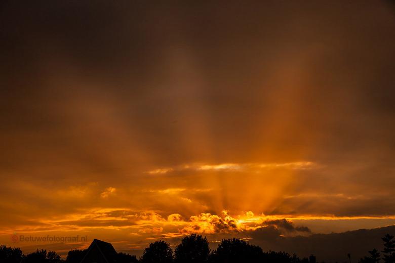 Goodmorning Sunshine........