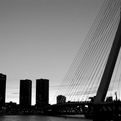 Rotterdam in black and white 2