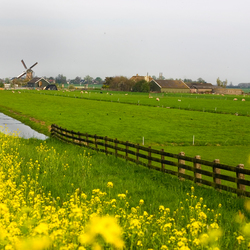 Zomerdag in april