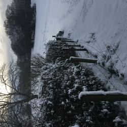 Sneeuw...