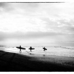 Surfboarden _ _
