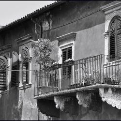 vergane glorie of groen op balkon