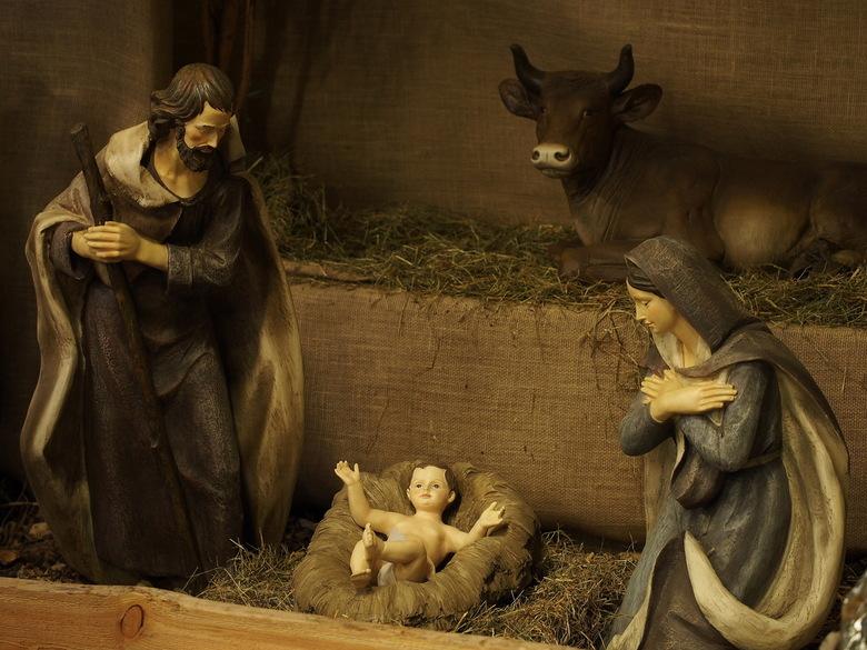 IN DE STAL... - Ik hoorde al iets krijsen vannacht ..<br /> Toen ik de beesten ging voeren ..het wonder...<br /> Fijne kerstdag...vandaag wat moment
