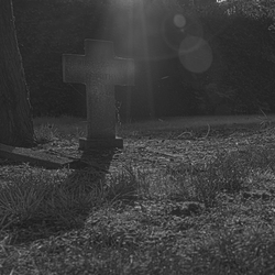 Lonely grave