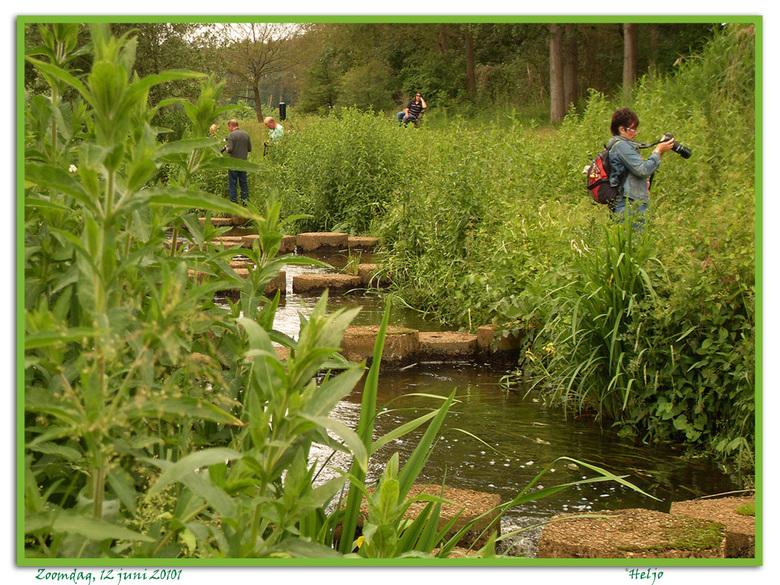 enkele Zoomers op jacht..... - Enkele deelnemers van de Zoomdag op 12 juni j.l. in Heino op 'jacht' in het prachtige natuurgebied rondom de