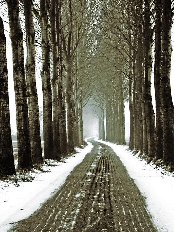 WinterRoad - Kaseien die doen denken aan wielerklasiekers.. De foto spreekt voor zich, ik hoor graag feedback zowel positief als negatief! leer ik van