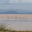 Ethiopie Langano Lake 5
