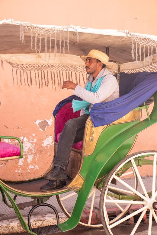 Caleche - Wachtend op de volgende klant voor een ritje in zijn kleurrijke stad.