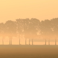 Ochtendmist in Drenthe