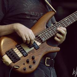Hello bass