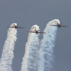 RJAF Falcons Synchro