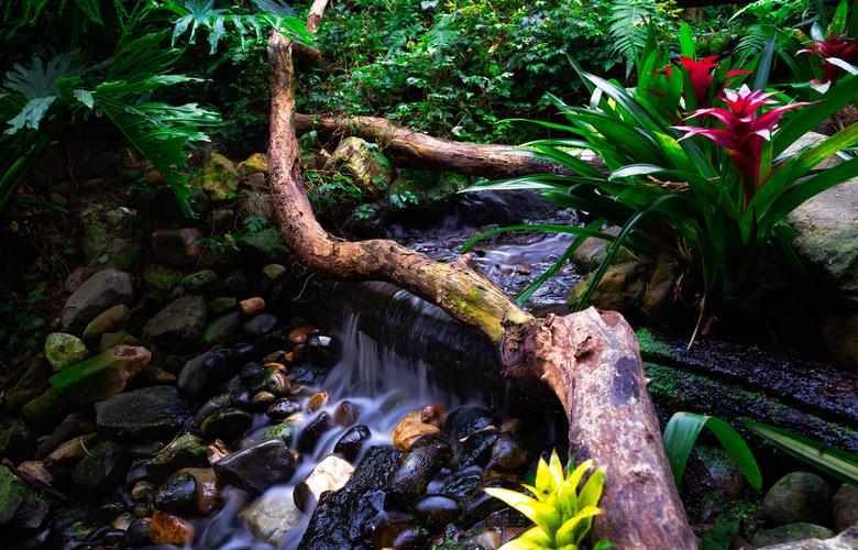 Waterval in de orchideeënhoeve  - 1 van de watervallen in deze prachtige plek .