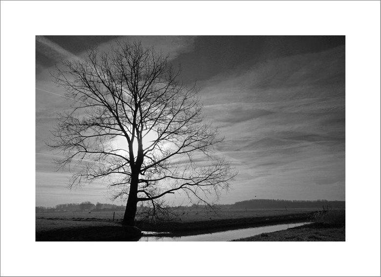 Eenzaam - *