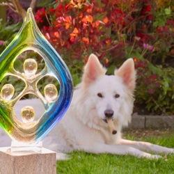 hond met kauwstok en beeld in zonnetje IMG_4054