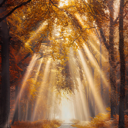 Autumn invasion
