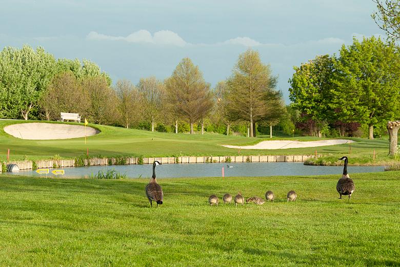 Aan de wandel.... - Een familietafereeltje op de Rijswijkse Golfbaan