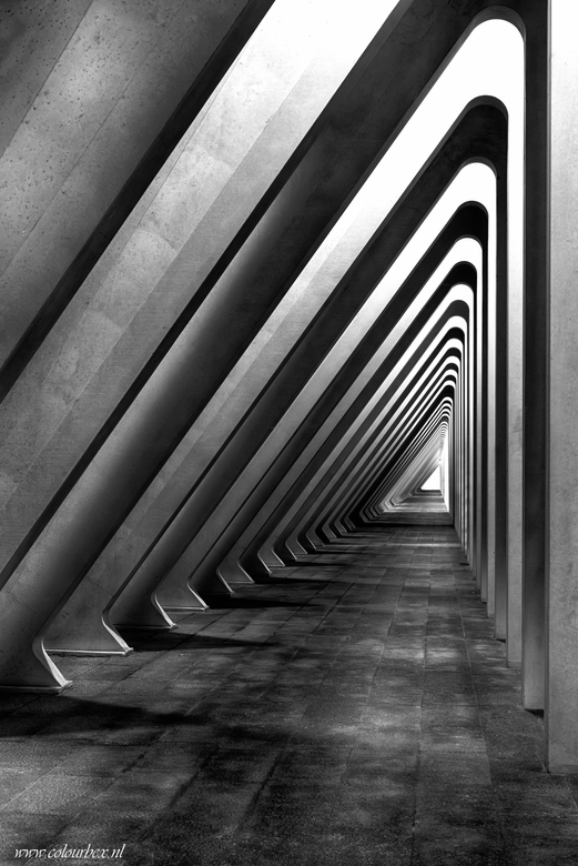 Verdwijn - Doorkijkje van Calatrava.