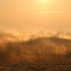 Wellerwaard ochtendgloren