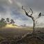 c-boers landschap-zoom 2
