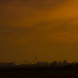 Panorama Kinderdijk @ Sunset