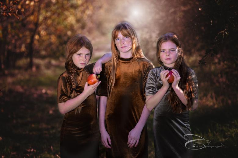 3 ginger girls -
