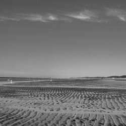 Strand Bergen aan Zee in de ochtend.