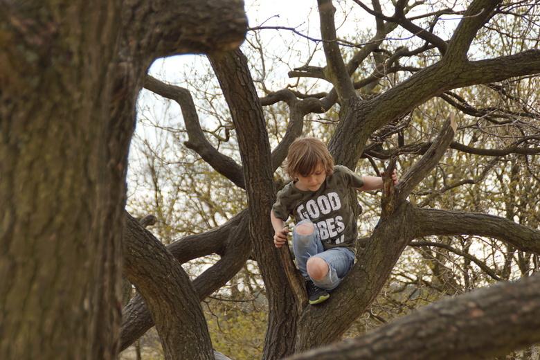 klimmen - lekker klimmen en klauteren is het eukste wat er is.