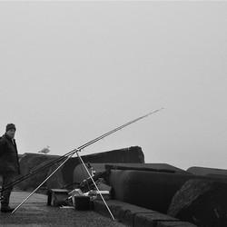 Visser op pier 4