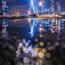 Rotterdam Puddlegram